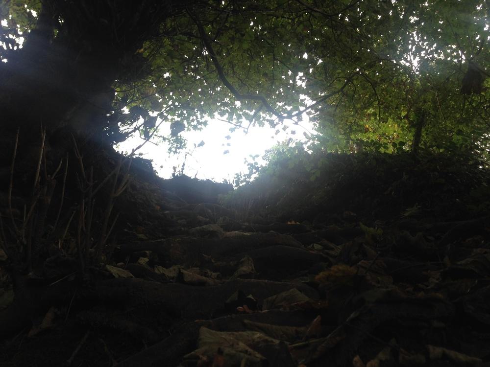 narrow_pathway_of_light