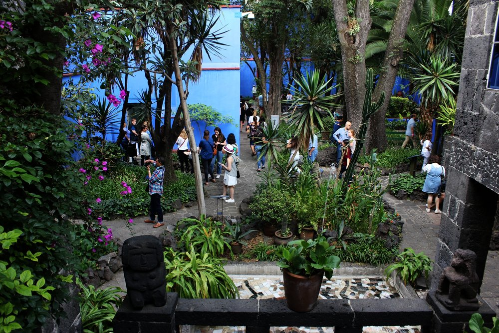 Frida and Diego's courtyard was so beautiful featuring a garden of herbs and flowers // Museo Frida Kahlo.