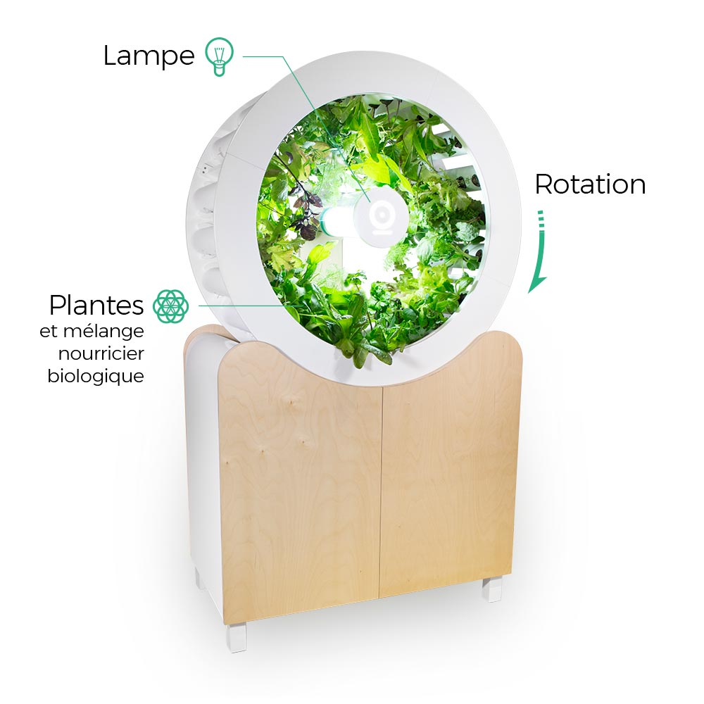 OGarden-plants-environment-agriculture-home-visualatelier8-6.jpg