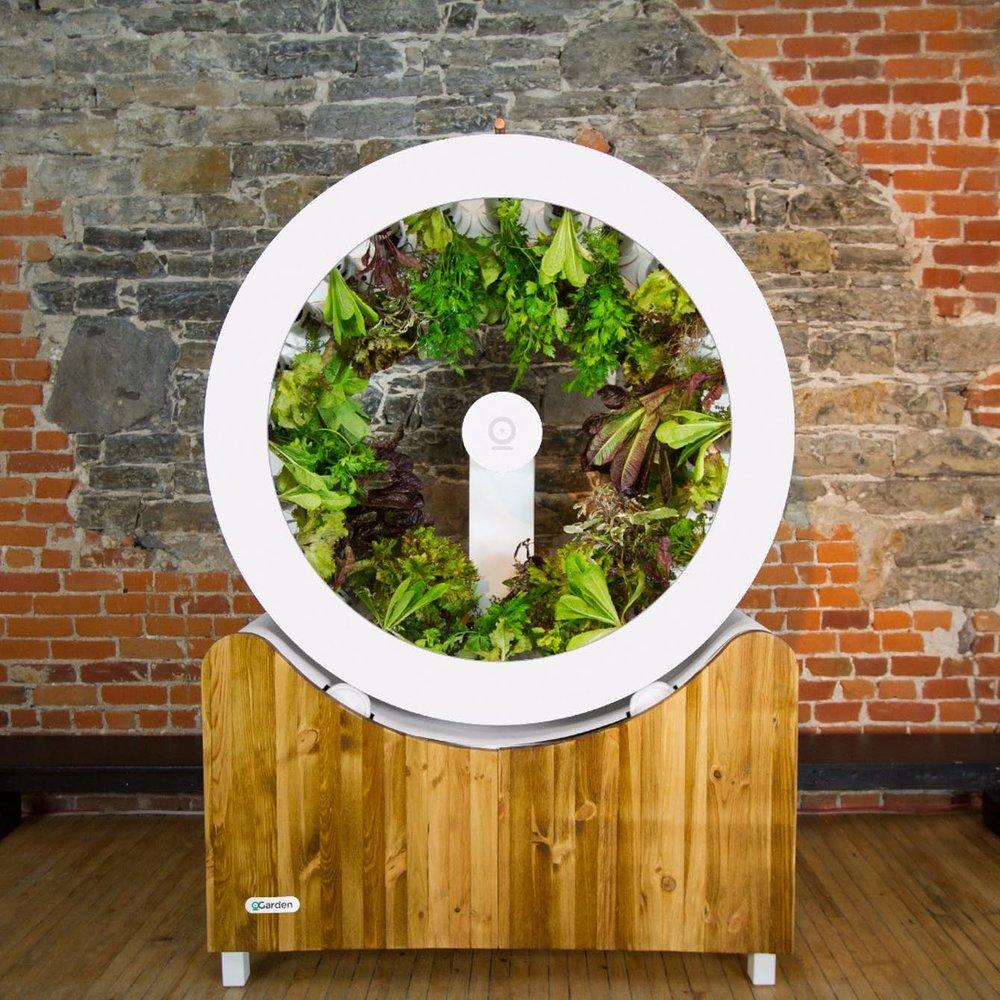 OGarden-plants-environment-agriculture-home-visualatelier8-2.jpg