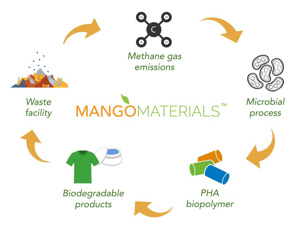 Mango-materials-Biodegradable-Visual-Atelier-8-1.jpg