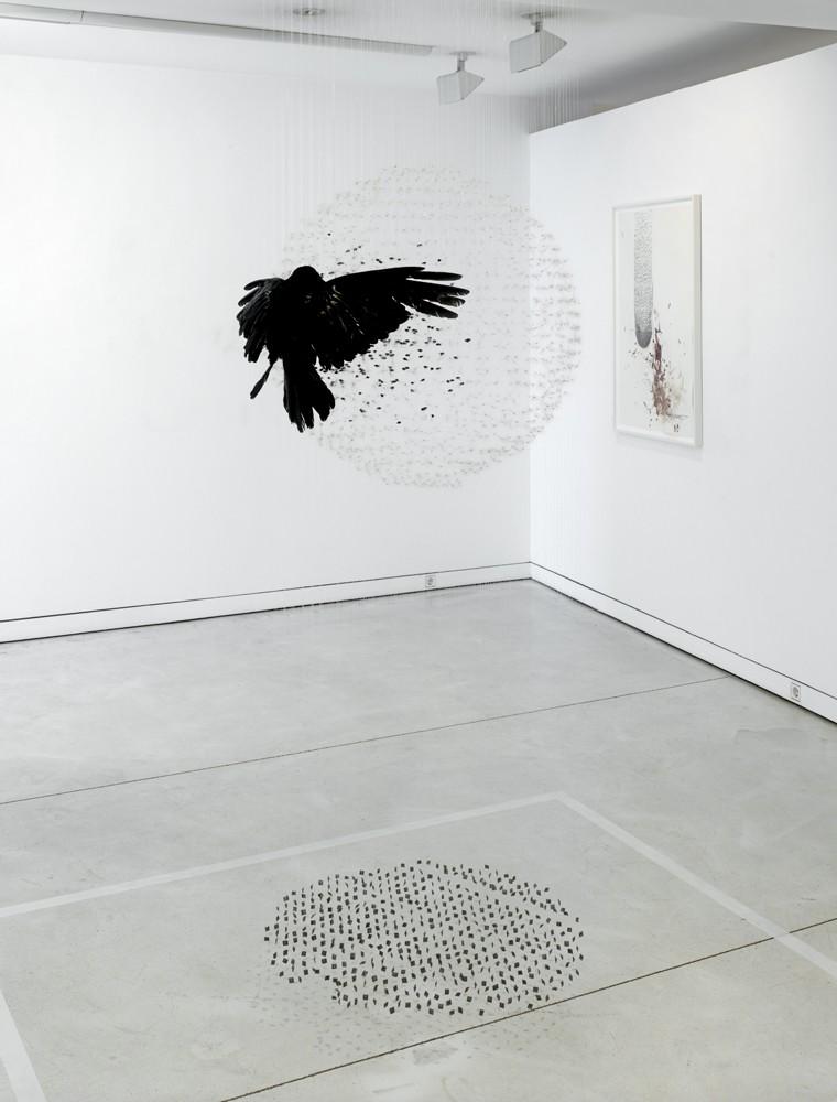Claire Morgan-Visual Atelier 8-Sculpture-Art-2.jpg