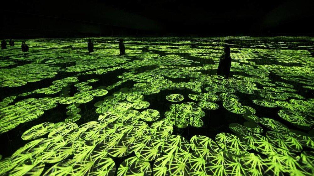 TeamLab-Visual Atelier 8-Art-Japan-Installation-Future-4.jpeg