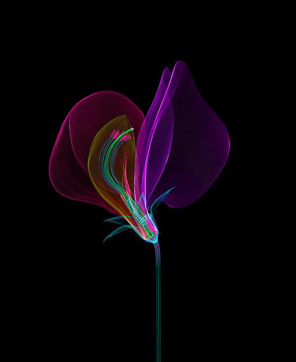 Macoto Murayama-Interview-Visual Atelier 8-Botech Art-19.jpg