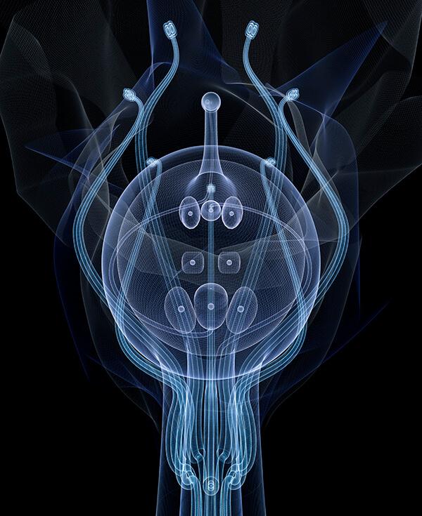 Macoto Murayama-Interview-Visual Atelier 8-Botech Art-25.jpg