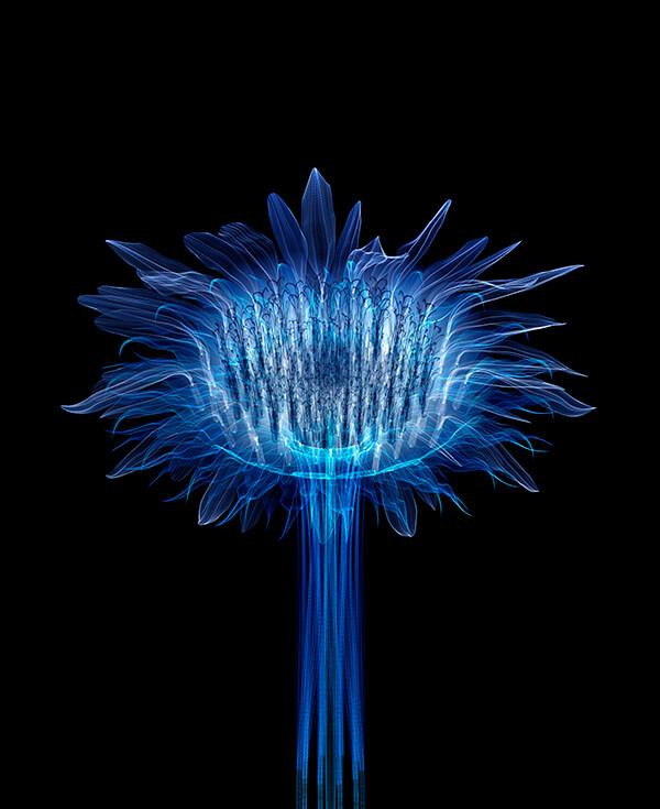 Macoto Murayama-Interview-Visual Atelier 8-Botech Art-11.jpg