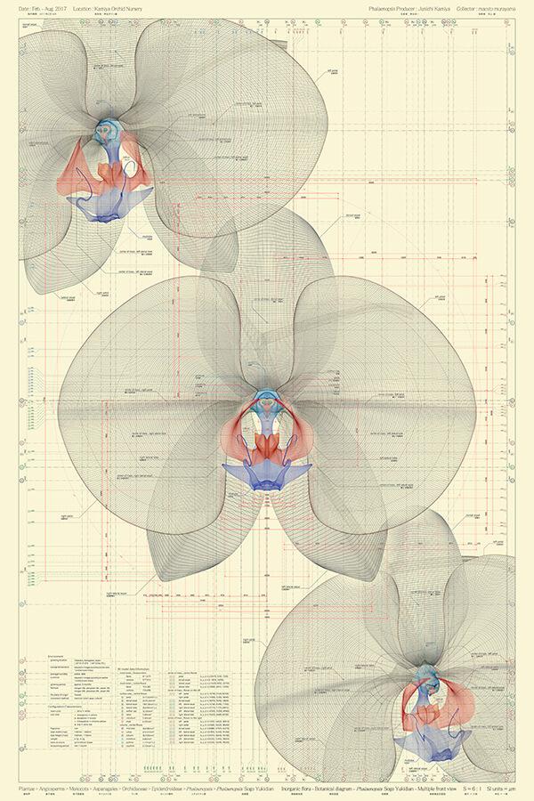 Macoto Murayama-Interview-Visual Atelier 8-Botech Art-4.jpg