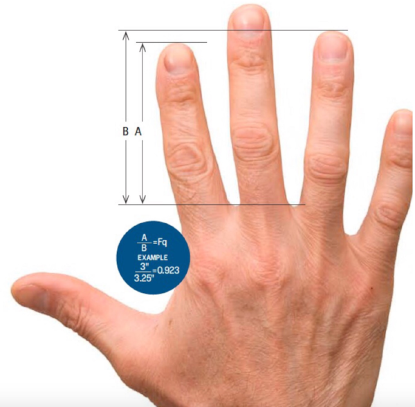 Measure 2D:4D