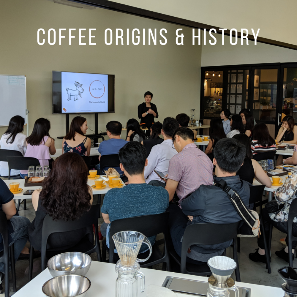 coffee-origins-history.png