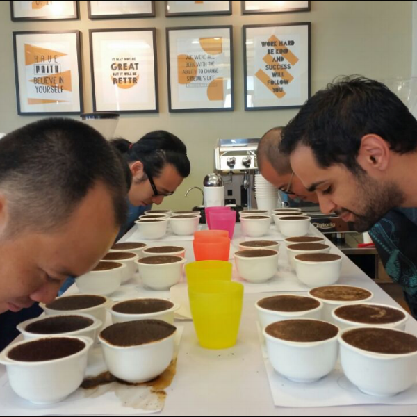 SENSORY SKILLS - Investigate the way we perceive what we taste, and how to evaluate coffee's natural characteristics.