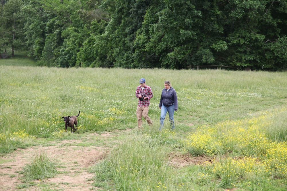 Ross, co-founder of Left Bank Butchery, and Eliza MacLean, walk through a pasture at Eliza's Cane Creek Farm.