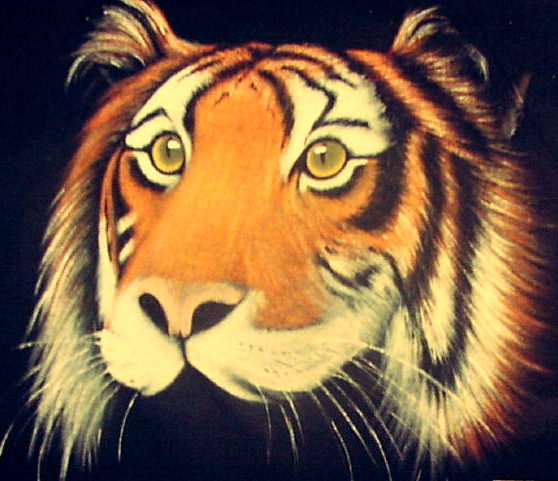 The tiger is a Burmese astrological symbol