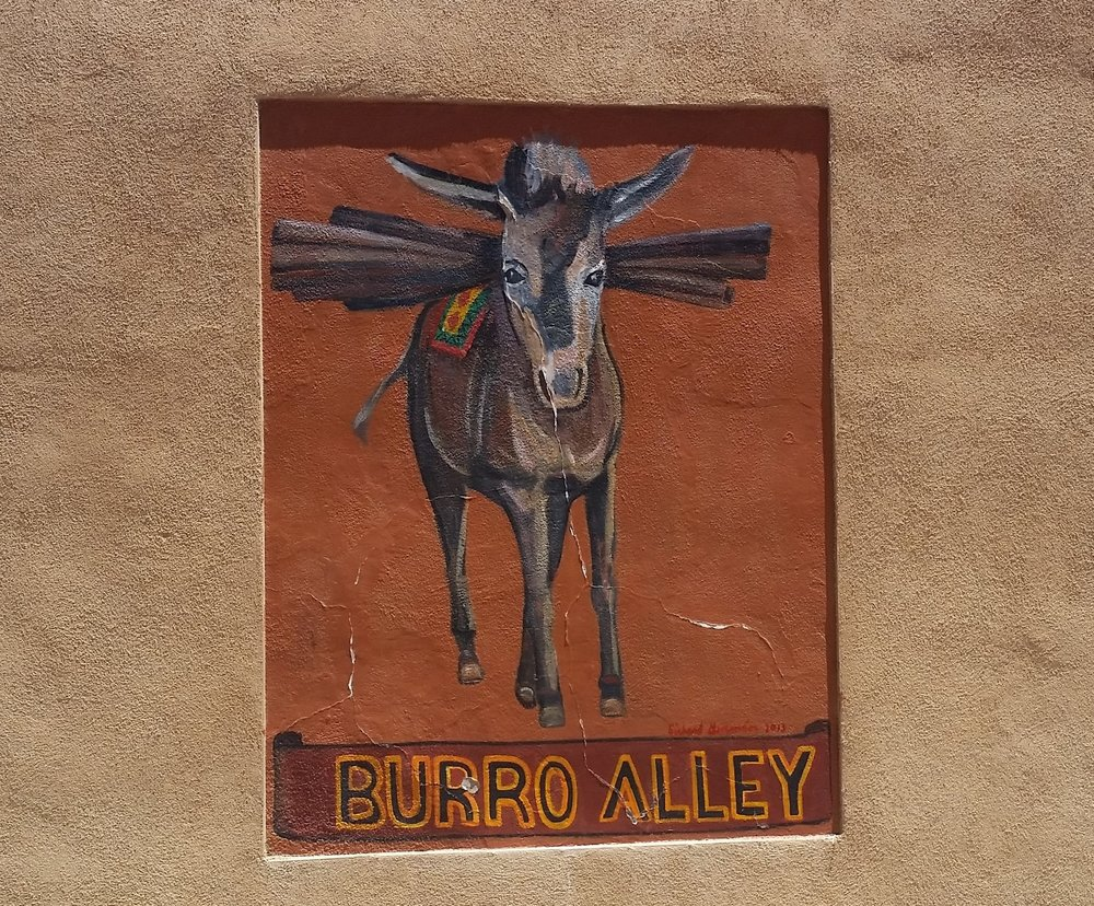 burroalley.jpg
