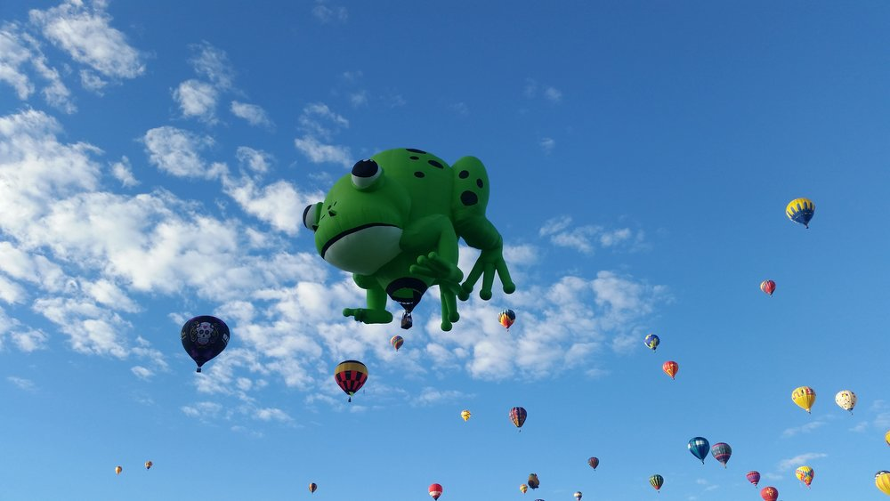 frogballoon.jpg