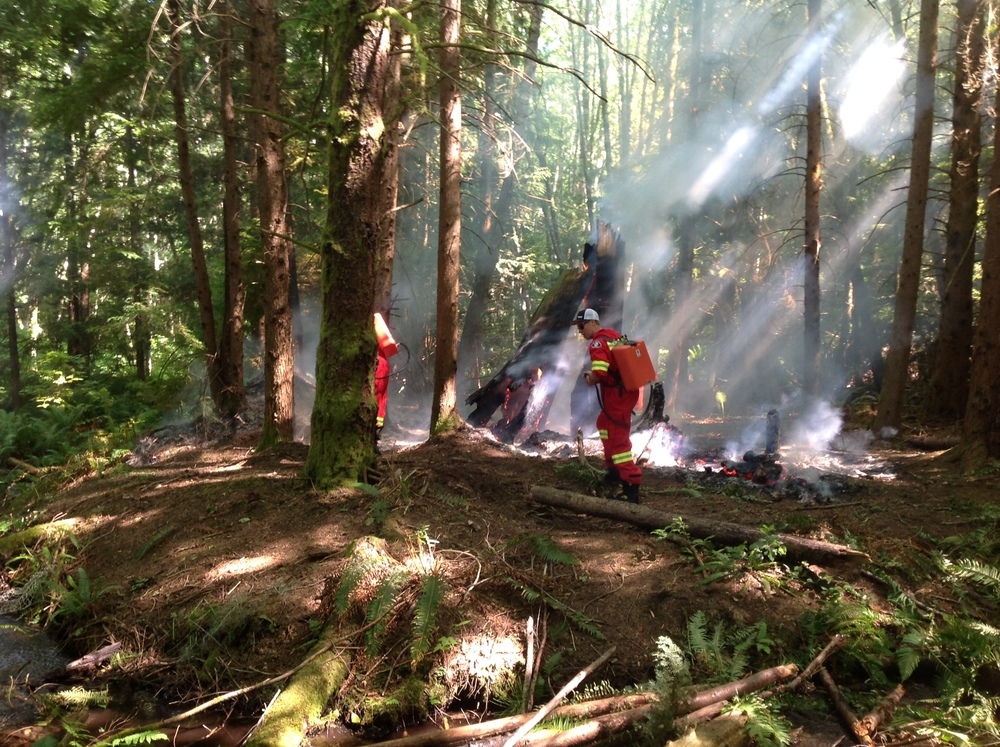 Comox firefighters returned to the location the following day to ensure the fire was out