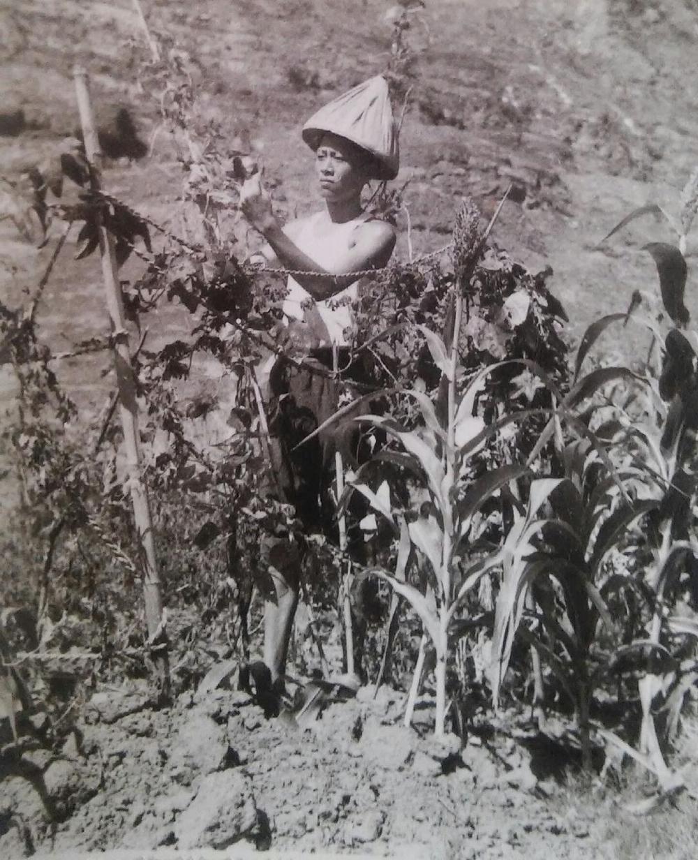 """陈老师曾经在江西省的一个偏僻地区""""接受再教育"""",1969年"""