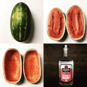 Watermelon Brandy PICstitch.png