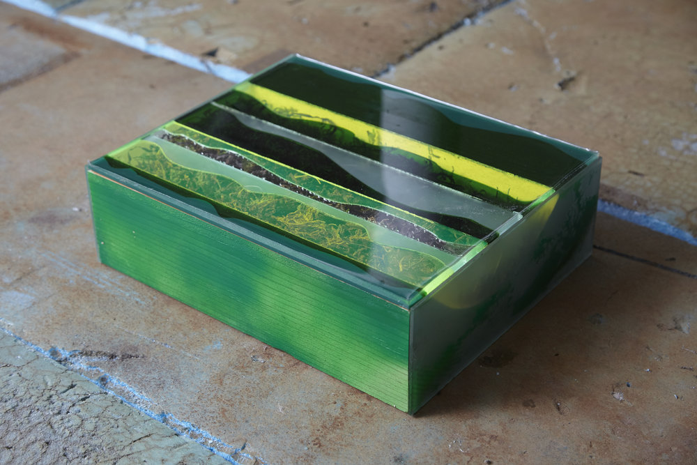 Moss Box , 2017