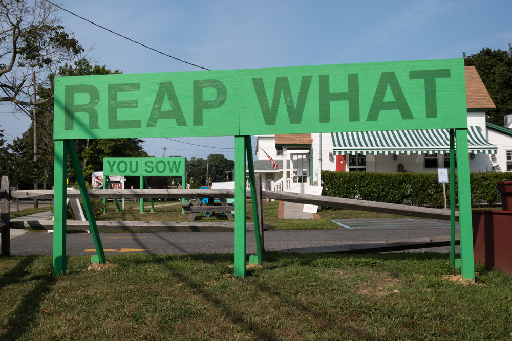 Reap What You Sow,  2017 ,  Auto Body.    Photo by Jenny Gorman