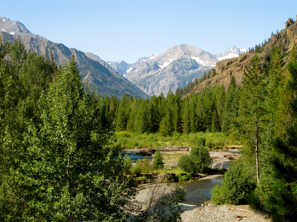 North Absaroka Wilderness (351,000 acres)