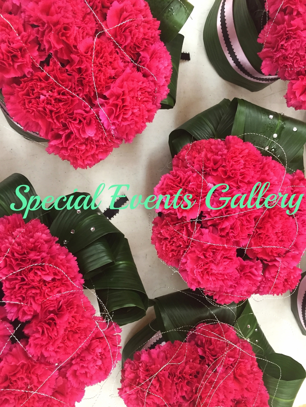 Special Event Gallery.jpg