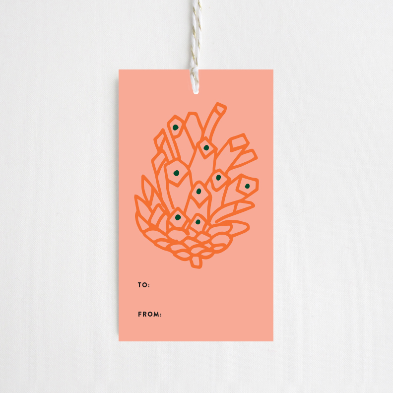 TheDetroitCardCo-Pine-Cone-Pink-3.jpg