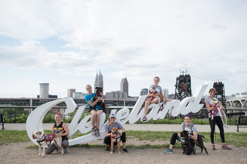 City Dogs Running Group in front of Cleveland sign (photo by  Greg Murray )