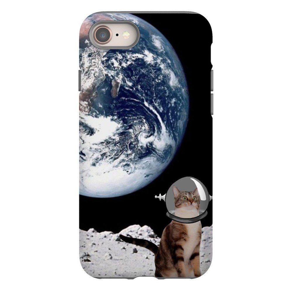 cat in space.jpg