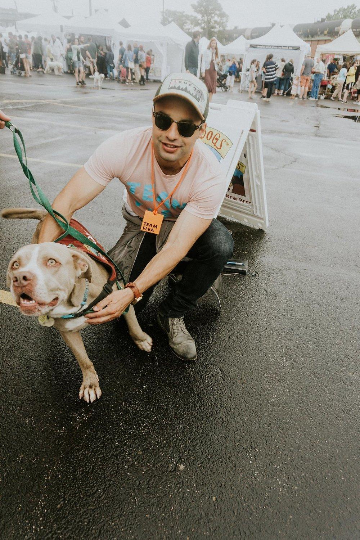 City Dogs.jpg