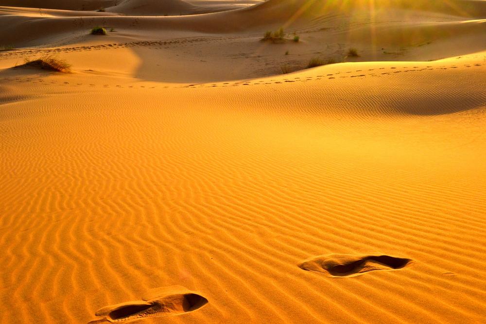 Sahara Desert, Morocco, 2012