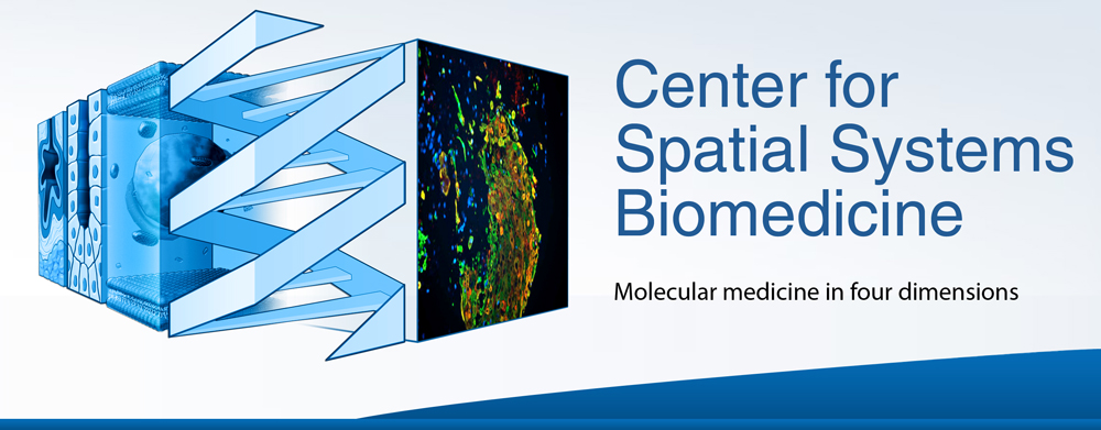 Center for Spatial Systems Biomedicine Graphic Identity