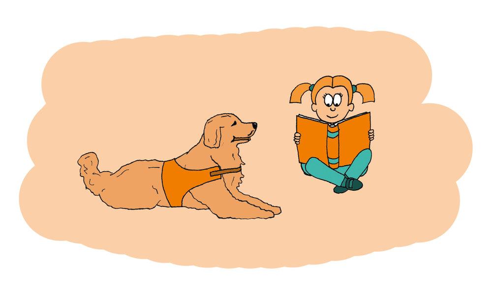 Voorleeshond - Voor elk kind is het belangrijk dat het leert lezen, maar voor sommige kinderen is hardop voorlezen moeilijk of spannend. Voor hen is er de voorleeshond, een hond die braaf naar ze luistert. Het geeft een kind moed, zelfvertrouwen en het zorgt voor meer sociale vaardigheid en betere communicatie. Op deze manier wordt voorlezen stukke leuker én zeer leerzaam.