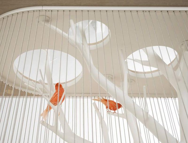 birdcage-table-1-IIHIH.jpg