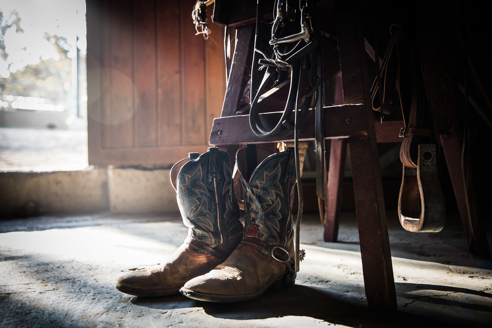 Ojai-horsmanship-equine-school-photography-31.jpg