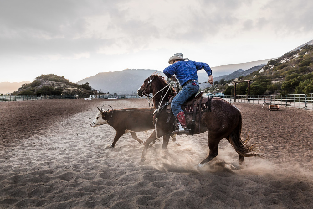 Ojai-horsmanship-equine-school-photography-75.jpg