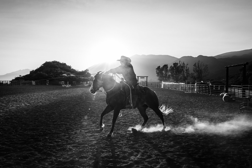 Ojai-horsmanship-equine-school-photography-80.jpg