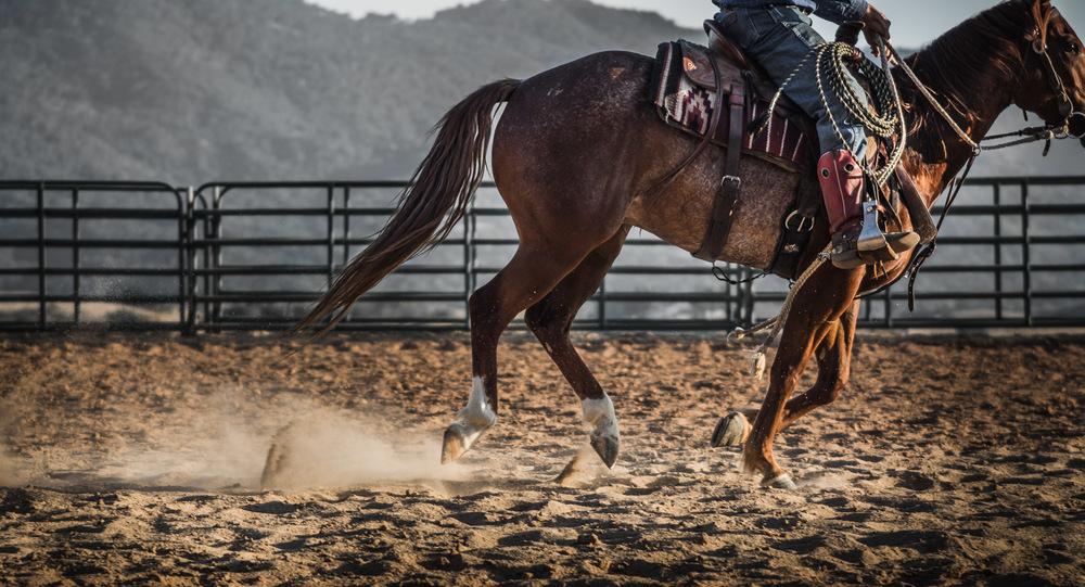 Ojai-horsmanship-equine-school-photography-82.jpg