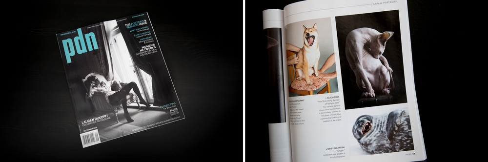 Photo District News magazine featuring my work about the hairless cats.