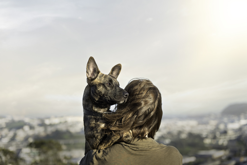 photo-of-owner-carrying-dog-photography.jpg