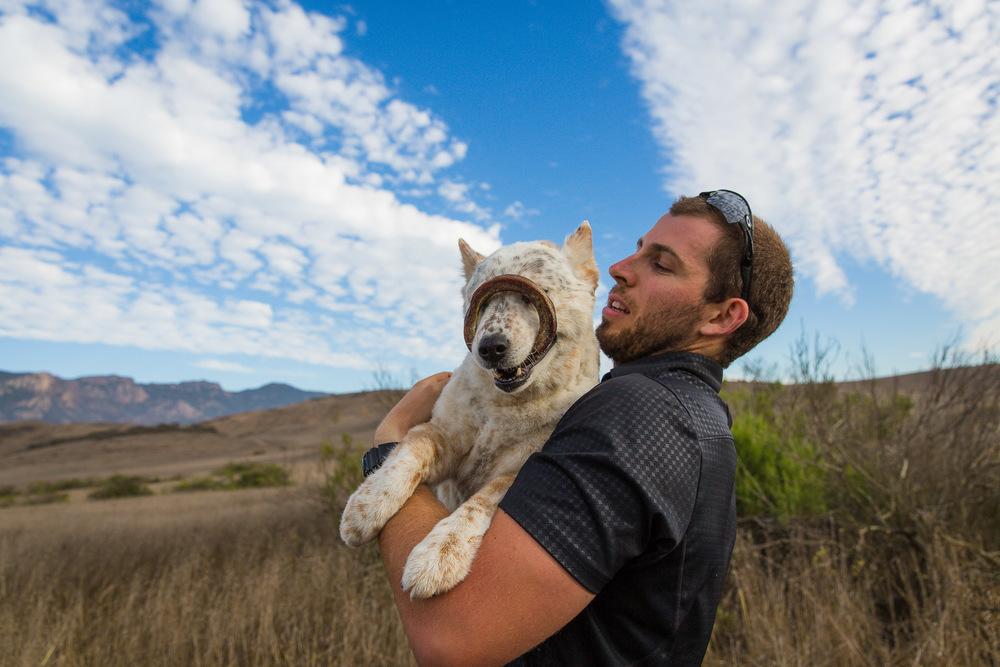 los-angeles-commercial-dog-photographer-for-pet-brands-20.jpg