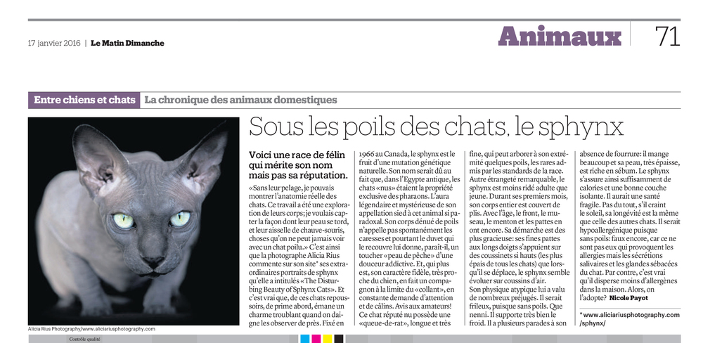 le-matin-dimanche-alicia-rius-the-cat-photographer-sphynx.jpg