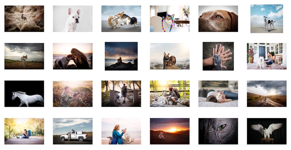 Sample of some of the images I present to clients. I always put one image per page in a PDF.