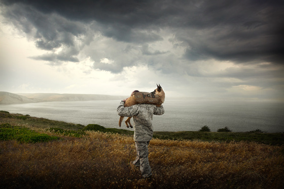 military-man-rescuing-dog-german-sheppard-dog-photographer.jpg