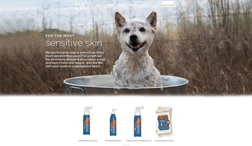 Roxys-remedies-professional-pet-photographer-dog-photography-dog-bathing.jpg