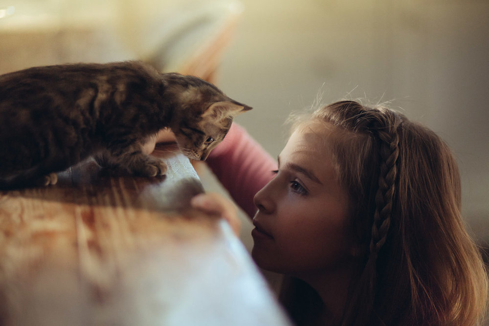 little-girl-with-kitty-kitchen-playing-animal-photographer.jpg