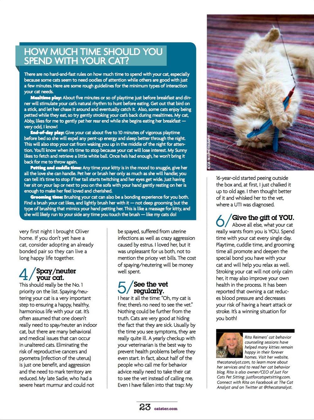 catster-magazine-cat-photographer-los-angeles.jpg