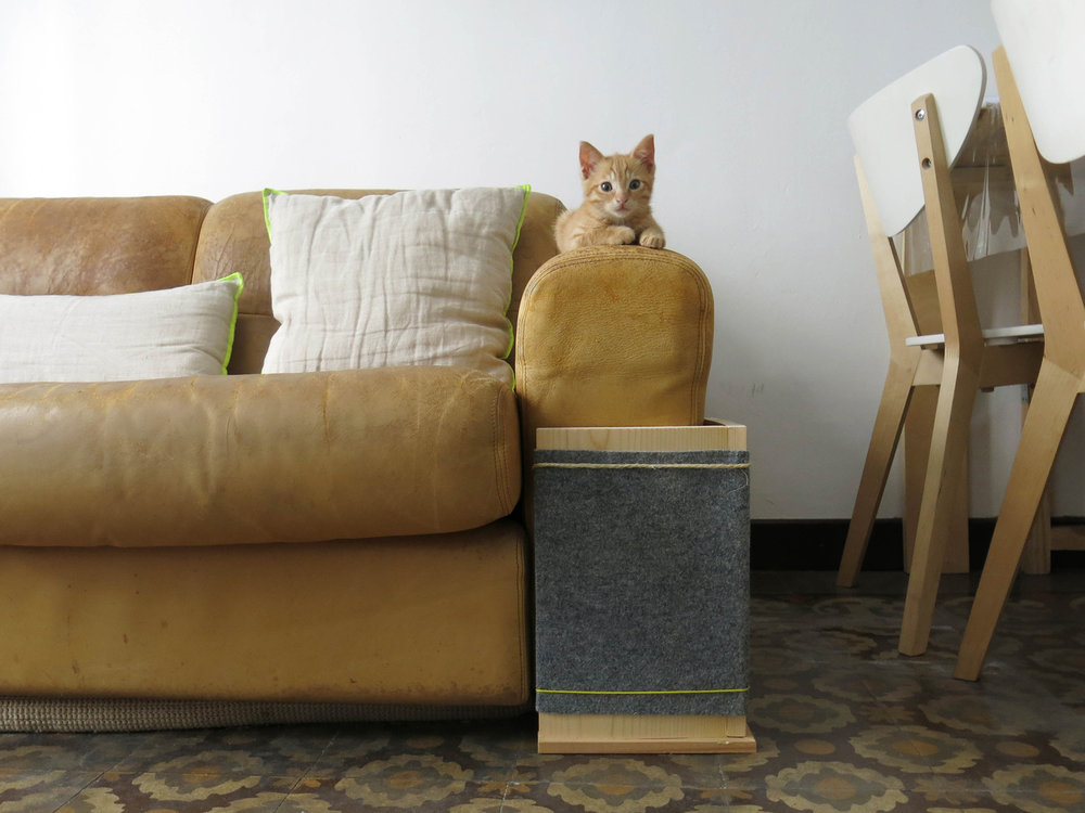 bixu sofa web.jpg