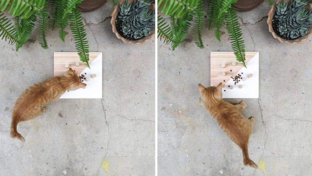 menjadora combo garden atelier.jpg