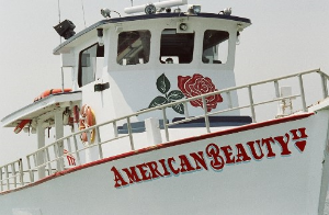 AMERICAN BEAUTY CRUISES & CHARTERS - Private charters, sunset cruises and 90 minute nature cruises from Long Wharf in Sag Harbor.Let Sydney's cater your private charter!