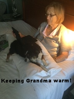 Keeping Grandma Warm.jpg